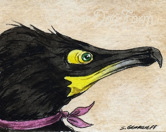 The Special Spectacled Cormorant~~ No 67 of 100 series- ~ signed watercolor print
