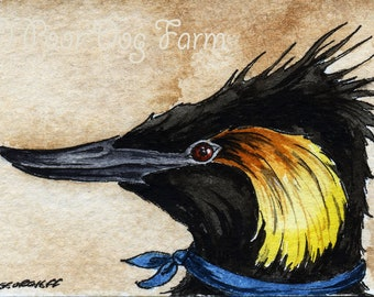 The Colombian Grebe~~ No 66 of 100 series- ~ signed watercolor print
