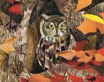 Peeping Owl art collage 8x10 print