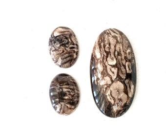 Petrified Palm Root Oval Polished Stone Designer Cabochons Set pf 3