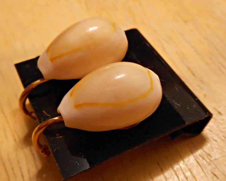 Cowry Shell Natural Clip-on Earrings for Unpierced Ears or Over Pierced Ears