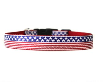 1 Inch Wide Dog Collar with Adjustable Buckle or Martingale in All American Dog