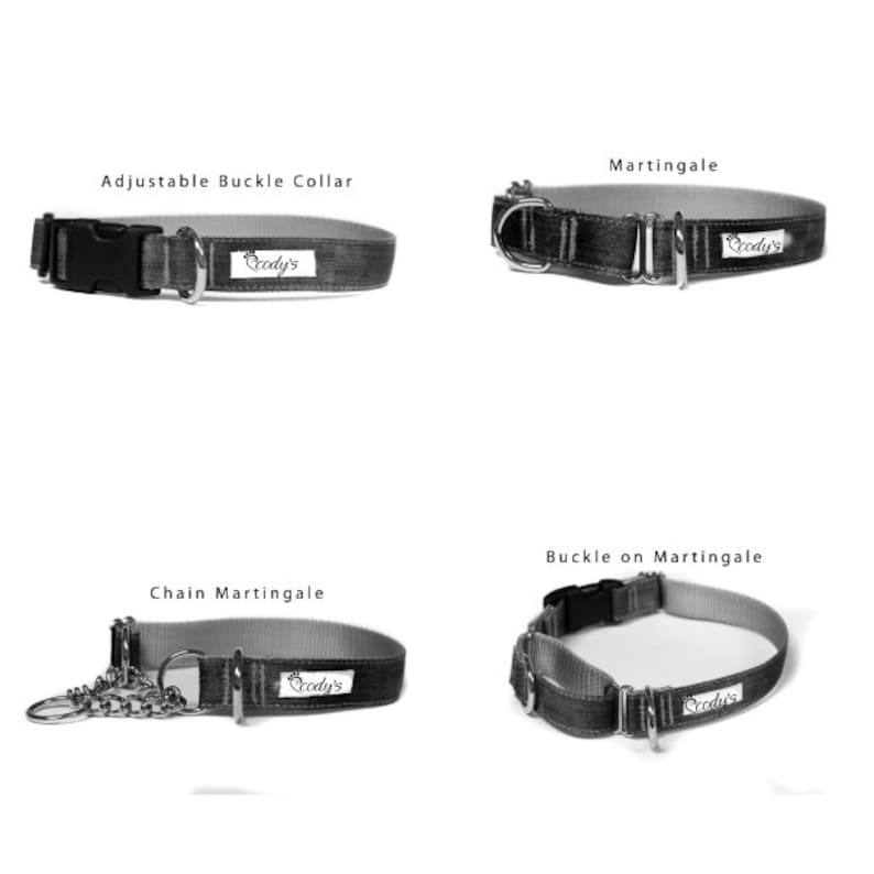 58 or 34 Inch Wide Dog Collar with Adjustable Buckle or Martingale in Swiss Flag