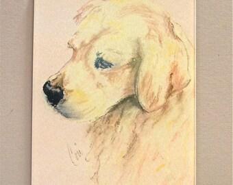 Golden Retriever Dog Art Glass Cutting Board By Cori Solomon
