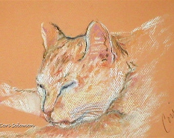 White and Orange Cat Art Original Pastel Drawing  By Cori Solomon