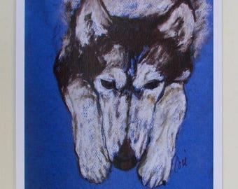 Siberian Husky Dog Art Note Cards By Cori Solomon