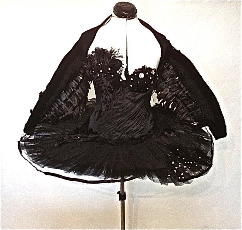 Black Swan Costume with Wings image 0