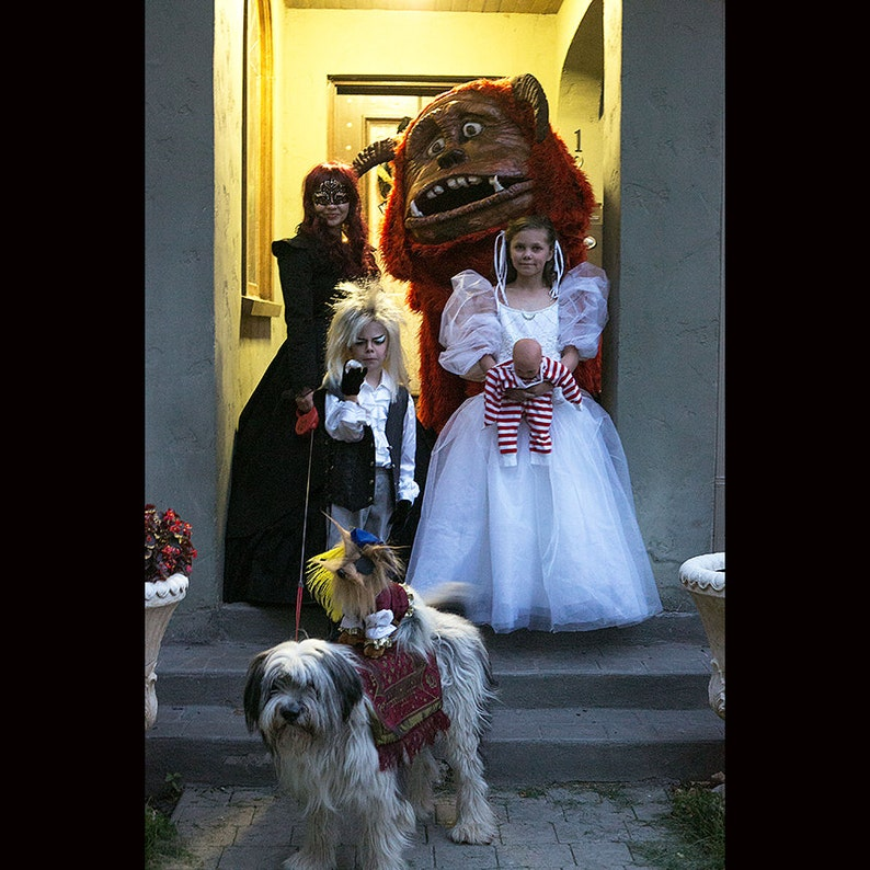 Labyrinth Family Costume image 0