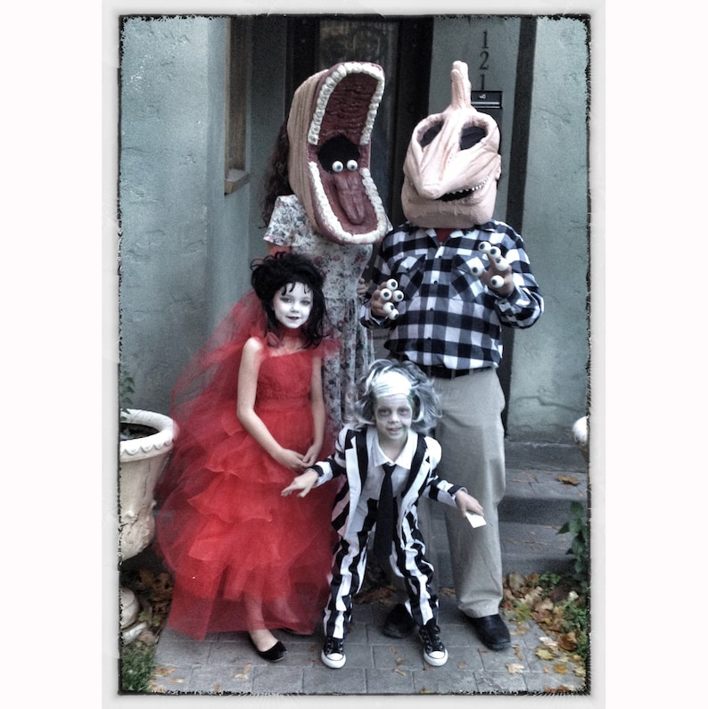 Beetlejuice family costume image 0