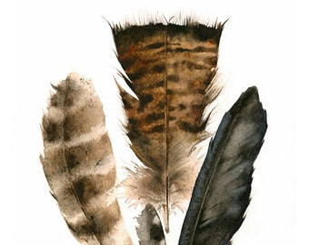 """feathers painting, watercolor, art, wall, decor, earth tones, """"Found Feathers"""" Large Archival Print"""