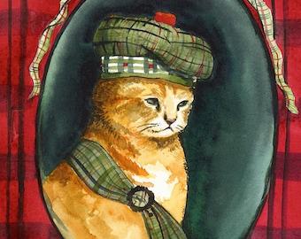 Angus- Scottish Kitten