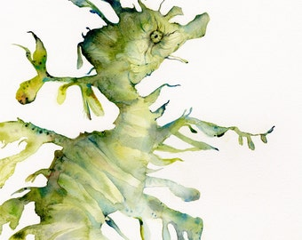 Leafy Sea Dragon- Large Archival Print of watercolor