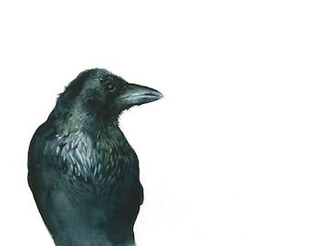 Raven Archival Print