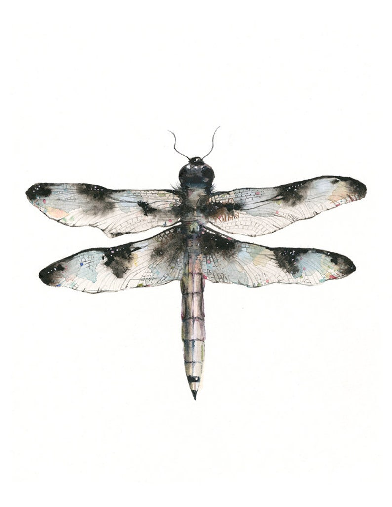 nature themed artwork  watercolor dragonfly image 1