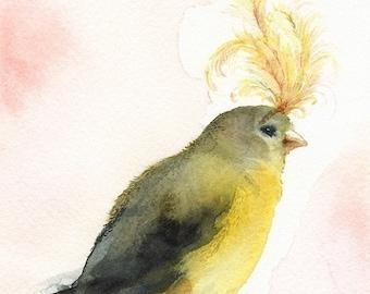 """bird art, bird painting, bird artwork bird print, bird watercolor print, """"Showgirl"""" Bird Art"""
