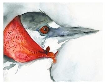 bird art - March Winds- Crane art