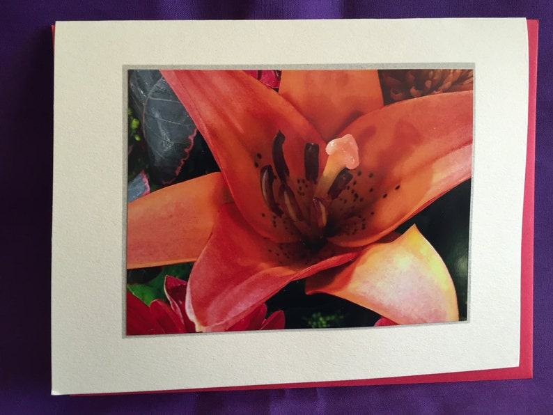 Day Lily Photo Blank Note Card image 0