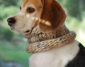 Beagle Cowl