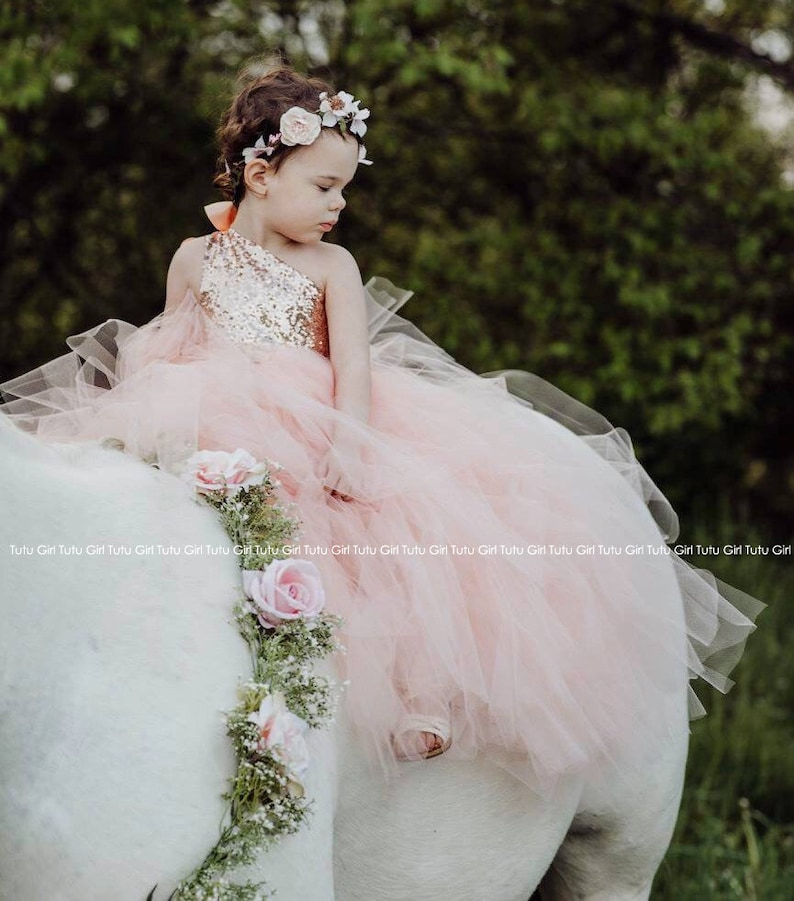 372999c6762 Peach Tulle Dress in Blush Sequins Flower Girl and Junior