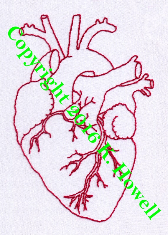Heart Hand Embroidery Pattern Anatomical Heart Human Heart Etsy