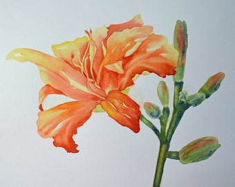 Day Lily - Day Lilies - Orange Flower Painting - Orange Flower Art - Lily Painting - Botanical Wall Art - Gardener Gift - Flower