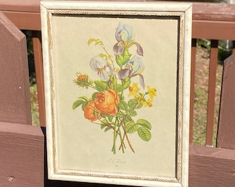 Jean Louis Prevost French Botanical Lithograph Framed Old Aged