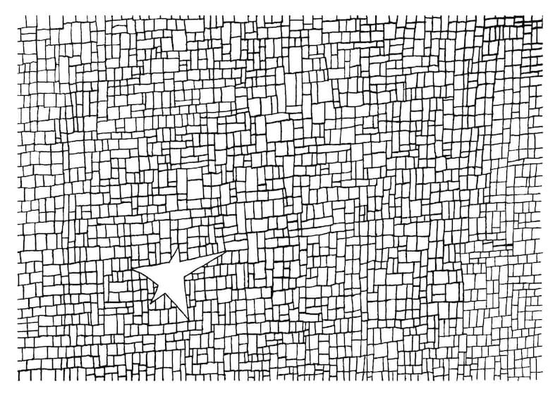 Star Bricks Bricks Coloring Page Star Coloring Page Adult Etsy