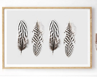 Feather Photography - (Print # 138)  - Pheasant Feather  -Fine Art Print - Two Paper Choices- Mineral Geode Agate Crystal Decor