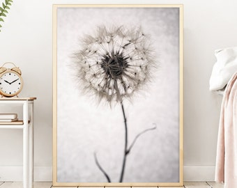 Floral Print   - (Print # 777   Dandelion Print - Fine Art Print - Two Paper Choices- Bohemian Home