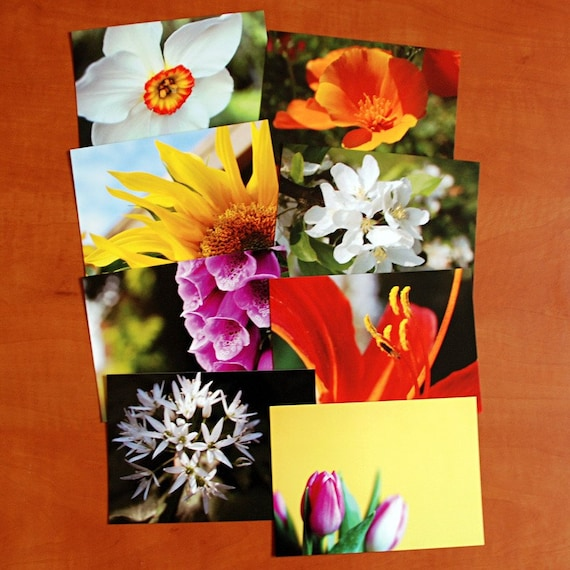 Set of 8 flora postcards