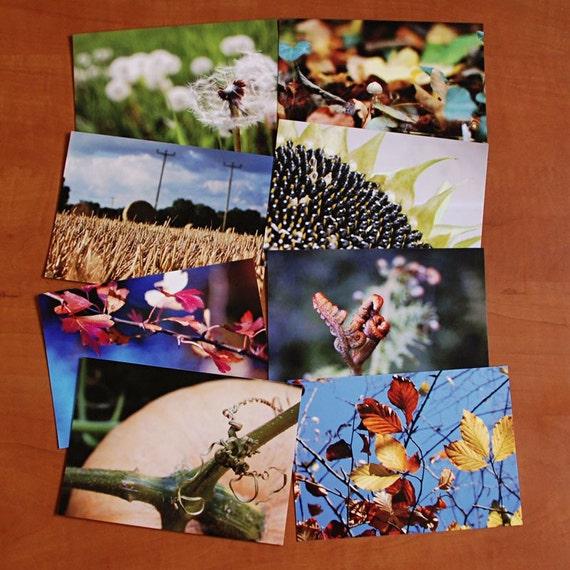Set of 8 autumn postcards