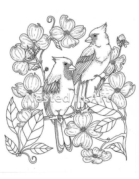 Punch Needle Pattern - Coloring Book page - Cardinals and Dogwood tree flowers