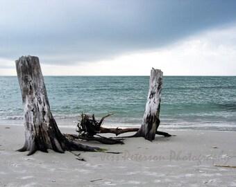Ocean Photography, Florida Stormy seascape Print, Gray Blue home decor, Driftwood tropical beach photos, Nautical wall art, Ocean lover gift