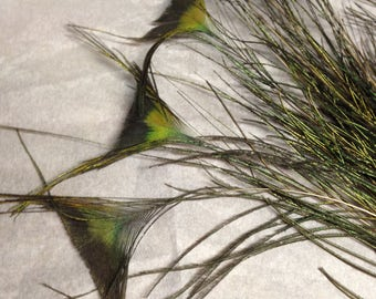 Butterfly EYE FEATHERS, Beautiful natural Peacock feathers, 20 Crafting feathers, cruelty free collection from our pet birds