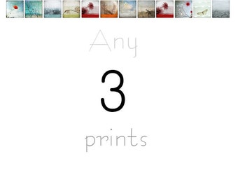 Set of 3 prints - Your choice - Photography Prints