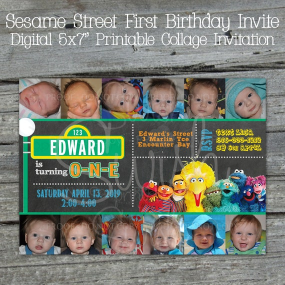 Great for birthday parties Elmo Newborn thru one year photo banner