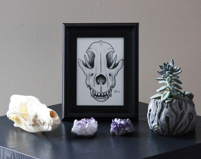 Framed Art - Wolf Skull - 5x7