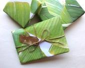 Tropical Gift Wrap / Nature Gift Wrap / Green and White Beach Gift Wrap / Boho Beach / Beach Print / Tropical Print