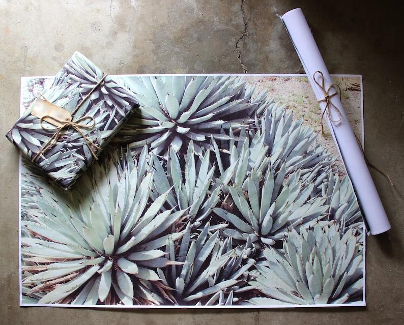 Desert Agave Gift Wrap Sheets