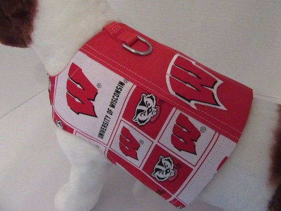 Wisconsin Badgers with APPLIQUE - Choose Size