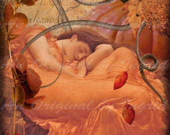 Sleeping Pumpkin Beauty Digital Collage Greeting Card (Suitable for Framing)
