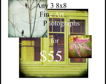SALE--Any 3 8x8 Fine Art Photographs for 55 USD