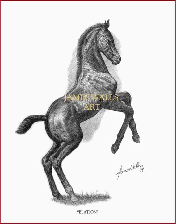 print Ed Ltd Saddlebred Horse Art James Walls Horse Art Presence