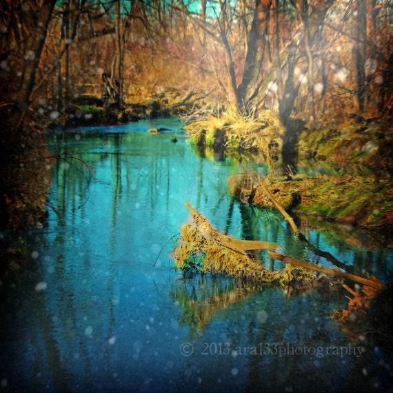 Fantasy Art Photography Teal Woodland Home Decor Nature Etsy