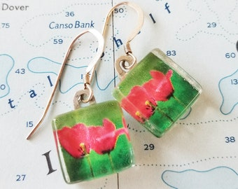 Love Blooms Earrings - Photo Earrings - Two Red Tulips - Tulip Earrings - Nature Photography - Happy Shack Designs