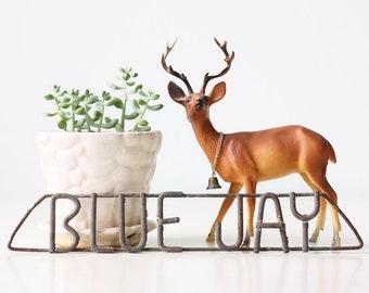 Vintage Blue Jay Sign