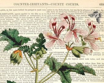 Dictionary Page Print Botanical Wall Art Collage Clammy Waxweed