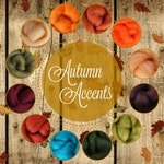 Autumn Accents Palette, Roving Packs, Wool Roving, Wool Roving for Felting for Spinning, Wool Roving for Sale, Needle Felting Supplies