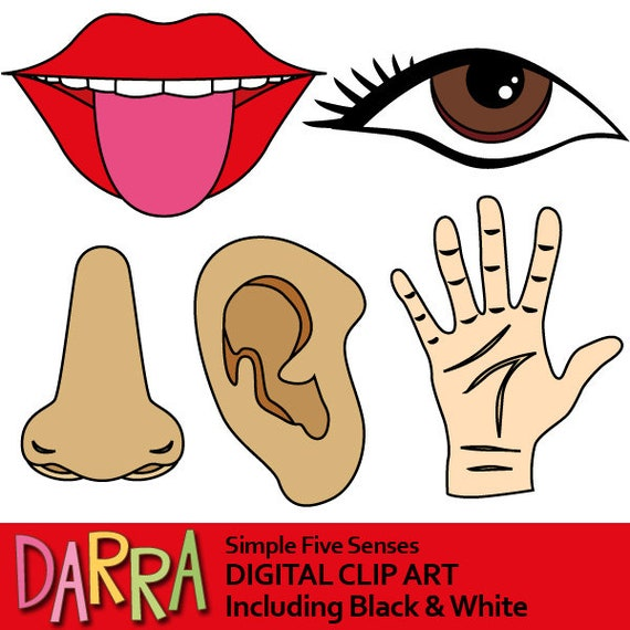 five senses clipart 5 senses clip art commercial use etsy rh etsy com five senses clipart my five senses clipart