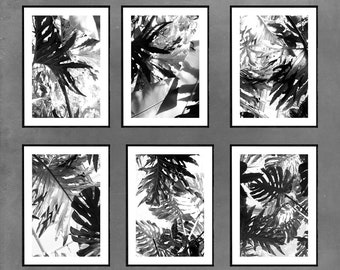 Abstract Tropical Leaf Print Set, Six Print Set, Modern Black White Wall Art, Monstera Photographs